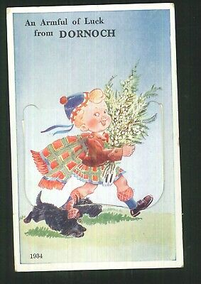 Postcard (Novelty) - Armful of Luck from Dornoch, Caithness - 1934