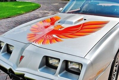 1979 Pontiac Trans AM stunning example 6.6L 79 Trans Am 6.6  Flowmaster Dual Exhaust Power Steering & Brakes Drives Amazing!