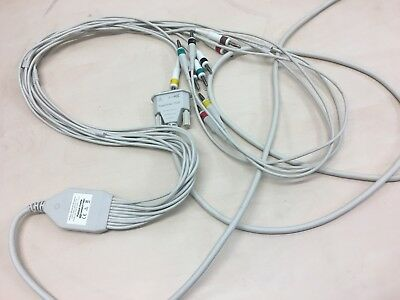 Philips PW TC20 10-Lead Patient Cable IEC, 989803175891 ECG Cable