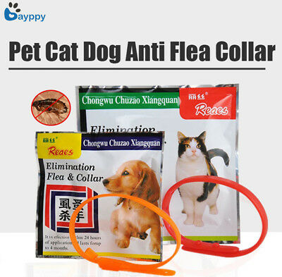Pet Small Dog Neck Soft Collar Pet Fleas Collar Anti Flea Tick Mite Adjustable