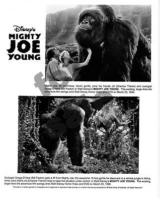 Mighty Joe Young Movie Still 2 B&W Photos Charlize Theron Bill Paxton