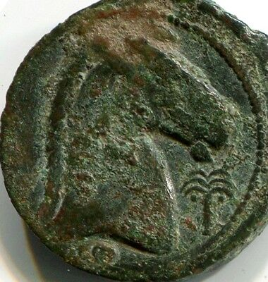 Agn - Carthage – Extremely Rare  Ae Punic Tanit / Horse & Palm-Tree & 2 Pellets