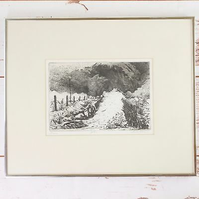 "Etching Print ""Fury"" Coming Storm Tyler Texas Artist Signed Numbered 4/40 Framed"