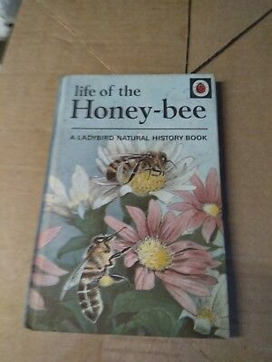 vintage ladybird book life of the honey - bee series 651 1969