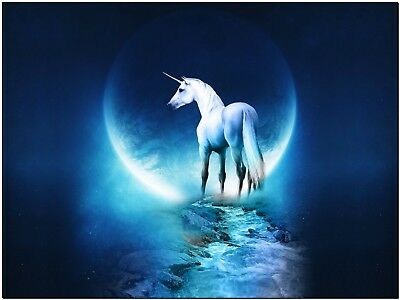 """Beautiful Fantasy Unicorn Moon and River Horse Canvas Print Poster 12X16"""""""