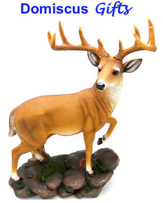 "13 1/2"" NEW! Western DEER Buck TROPHY Whitetail Horns COLLECTIBLE Figurine DWK"