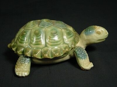 Green Turtle Trinket Box Realistic Porcelain Made in England