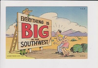 Vintage Postcard Everything is Big in theSouthwest! - unused