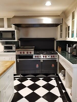 Wolf 60 Inch commercia 6 Burner Gas range includes stainless hood with lights.