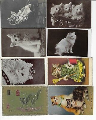 Lot of 8 Misc. Assorted Cats Antique Postcards (See Scans) (Lot 2/12)