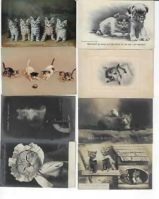 Lot of 8 Misc. Assorted Cats Antique Postcards (See Scans) (Lot 4/12)