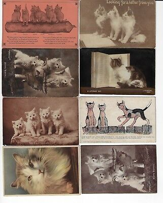 Lot of 8 Misc. Assorted Cats Antique Postcards (See Scans) (Lot 5/12)