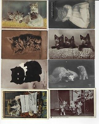 Lot of 8 Misc. Assorted Cats Antique Postcards (See Scans) (Lot 6/12)