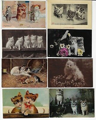 Lot of 8 Misc. Assorted Cats Antique Postcards (See Scans) (Lot 7/12)