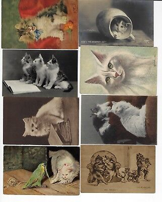 Lot of 8 Misc. Assorted Cats Antique Postcards (See Scans) (Lot 9/12)