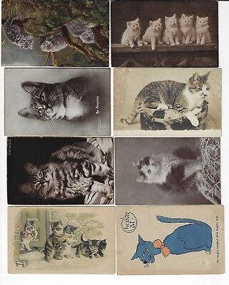 Lot of 8 Misc. Assorted Cats Antique Postcards (See Scans) (Lot 11/12)