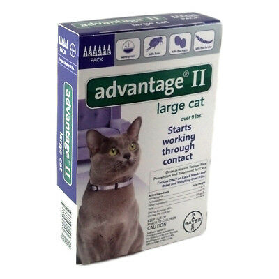 Bayer Advantage II Flea Treatment for Large Cats Over 9 lbs 6 Doses