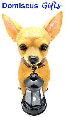 """12"""" NEW! CHIHUAHUA with Lantern COLLECTIBLE Figurine Animal STATUE Home Decor"""