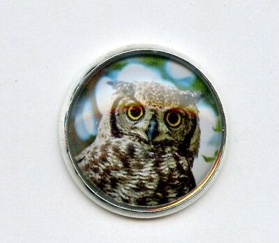 "1 1/8"" OWL button--GLASS DOME set in WHITE METAL--VIBRANT COLOR--NICE"
