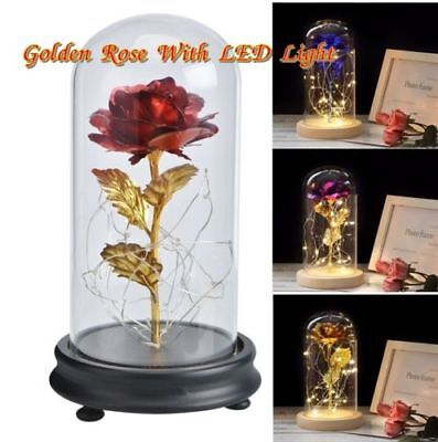 Beauty And The Beast 24k Gold Plated Forever Rose Dip Led Light glass Home Gift