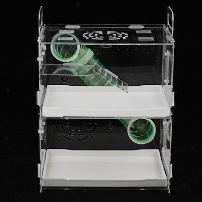 Hamster House Mouse Transparent Box Habitat Mice Rat Cage Acrylic