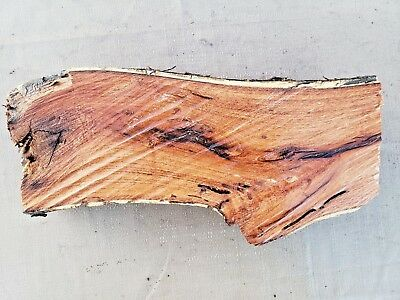 Salvage Live Edge Hard Wood Slab Spalted Crotch Mesquite Rustic Lumber Board 692