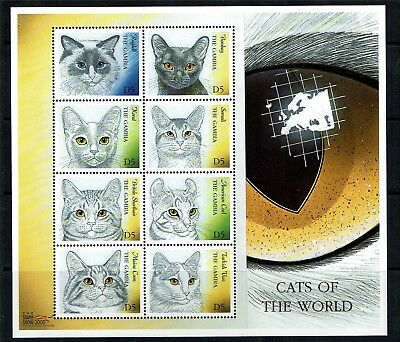 Gambia 2000 Cats of the World SG 2625-32 MNH