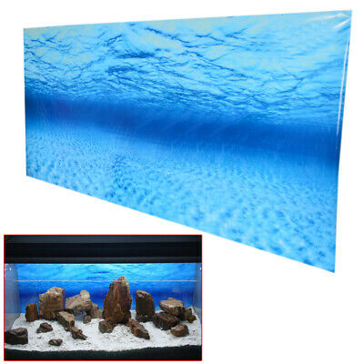 New Blue Ocean Fish Tank Aquarium Background Seascape Poster Wall Decor Hot Sale