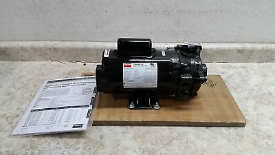 Dayton 2ZWP1 1/2 HP 3450 RPM 120/240V Straight Centrifugal High Flow Pump