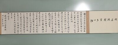 Long Unique Chinese Hand Writing Calligraphy Characters Old Scroll Painting YY04