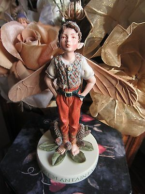 RETIRED! Cicely Mary Barker RIBWORT PLANTAIN Flower Fairy Figurine On Base NEW!