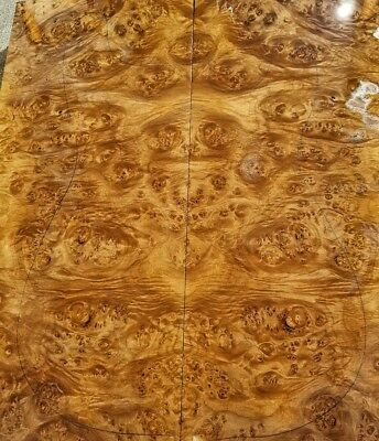 Burl maple 5a GUITAR and BASS lumber. Exotic wood Laminate for luthier.