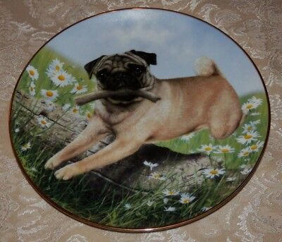 Danbury Mint Pug In Play Poppy Love Plates By Simon Mendez
