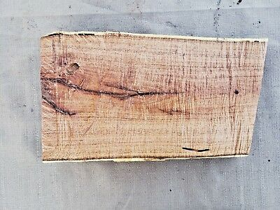 Salvage Live Edge Hard Wood Slab Spalted Mesquite Rustic Lumber Craft Board 748