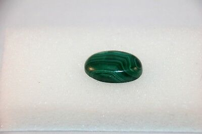 Natural Malachit Cabochon oval  Edelsteine 21x14mm, 25ct. (12)