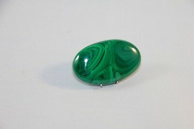 Natural Malachit Cabochon Oval ,  Edelsteine 37x24x7mm, 75,5ct. (19)