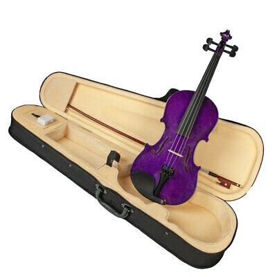 4/4 Size Acoustic Violin Kit with Case Bow Rosin for Beginners Students Gift