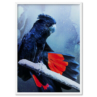 Black Cockatoo Art Print Poster. Watercolour Print Modern Australian | ANA-05