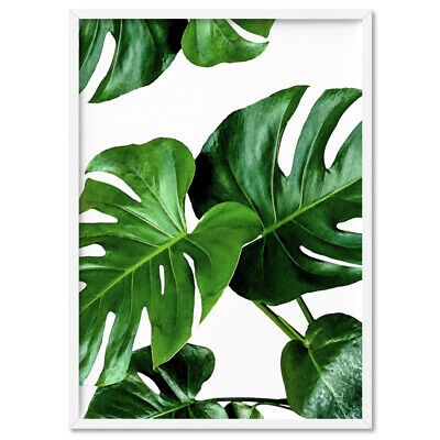 Monstera Leaf Print. Watercolour Green Leaves. Tropical Botanical Decor | PLT-10