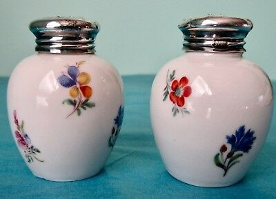 Silver Cup Hand Painted Porcelain Pair of Salt Shakers Germany Bavaria