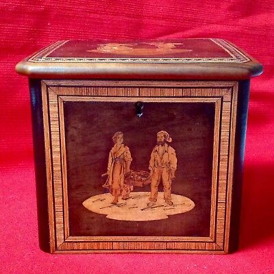 Antique Olive Wood Tea Caddy Box Inlaid With Walnut, Pink Ivory Wood, Ivory Wood