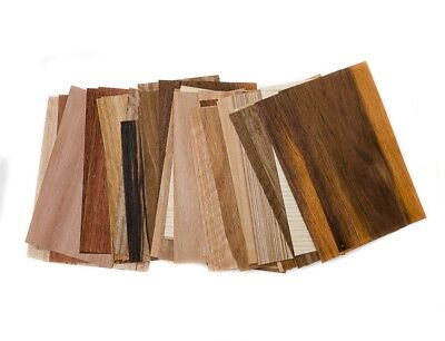 Marquetry Mix 0.75Kg Wood Veneer