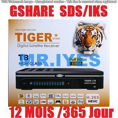 Disponible TIGER-FOREVER SERVEUR ACTIVATION