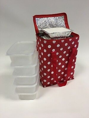 Small Insulated Hot/Cold Food Delivery Bag Take Away Thermal Deliveries Bags T1R