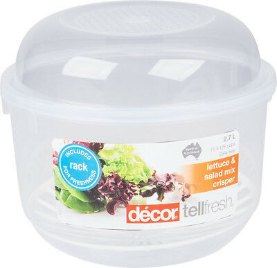 Décor Lettuce and Salad Mix Crisper Container with Removable Rack New