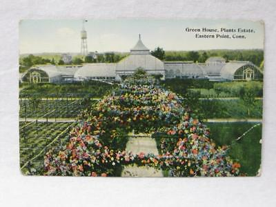 Green House Plant Estate Eastern Point Conn Ct Vtg Old Postcard Botanical Garden