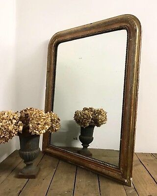 Stunning 19th Century French Louis Philippe Gilt Mirror
