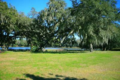 0.24 Acre lot in Silver Springs Shores-Seller Financing- Bid On the Down Payment