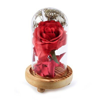 Red Silk Rose in a Glass Dome Home Lamp Decoration Beauty and the Beast Decor