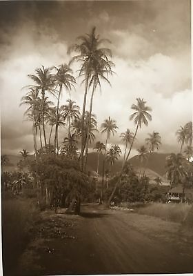1913 Vintage Photograph Of Kalakaua And Ena Rd., Honolulu Hawaii, Baker Photo